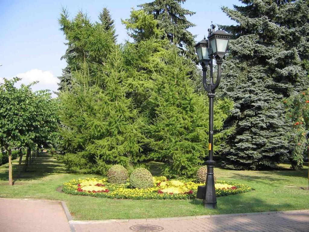 Центральный сквер Ставрополя