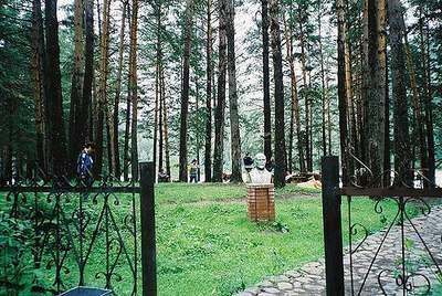 Природный парк в поселке Манжерок. Алтай.