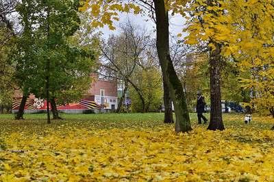 Золотая осень в Пушкино